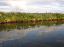 Речка, соединяющая Большое и Малое Советские озера