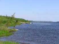 Речка Сургутиха