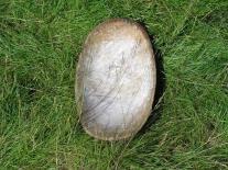 Кетское деревянное блюдо